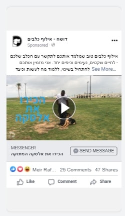 מודעה בפייסבוק לאילוף כלבים
